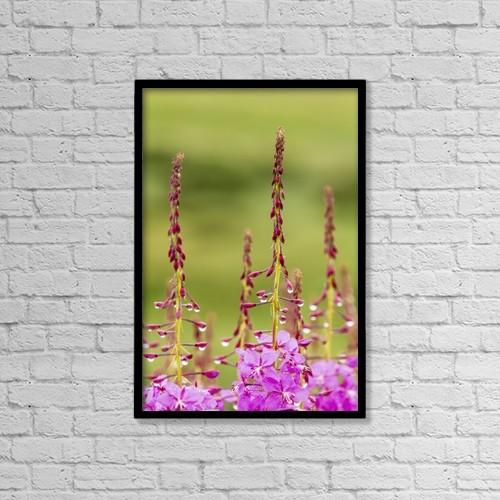 "Printscapes Wall Art: 12"" x 18"" Canvas Print With Black Frame - Flowers by Ray Bulson"
