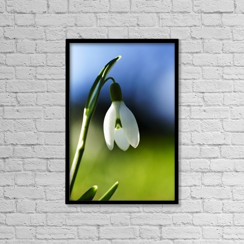 """Printscapes Wall Art: 12"""" x 18"""" Canvas Print With Black Frame - Flowers by John Short"""