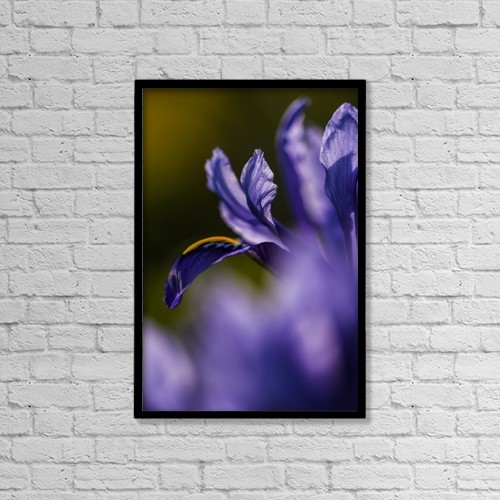 "Printscapes Wall Art: 12"" x 18"" Canvas Print With Black Frame - Flowers by Robert L. Potts"