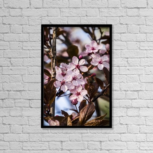 "Printscapes Wall Art: 12"" x 18"" Canvas Print With Black Frame - Close-Up Of A Pink Flowering Shrub by Leah Bignell"