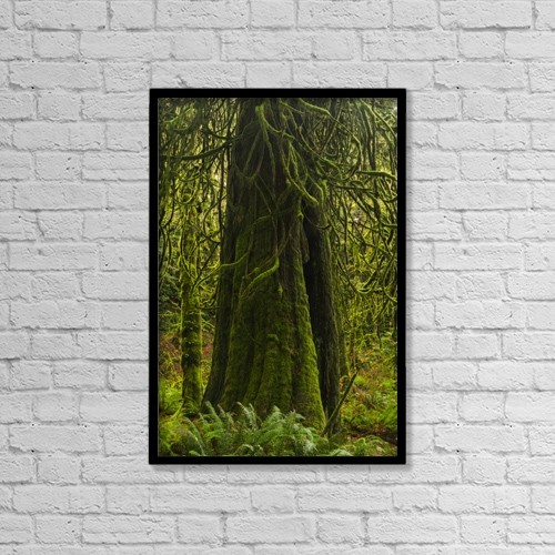 """Printscapes Wall Art: 12"""" x 18"""" Canvas Print With Black Frame - Nature by Robert Postma"""