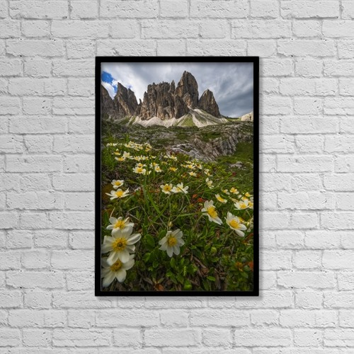 "Printscapes Wall Art: 12"" x 18"" Canvas Print With Black Frame - Flowers by Robert Postma"