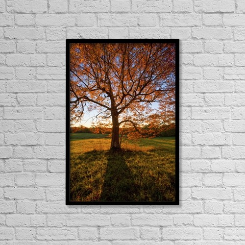 "Printscapes Wall Art: 12"" x 18"" Canvas Print With Black Frame - A Large Tree With Orange Foliage In Autumn by Irwin Barrett"