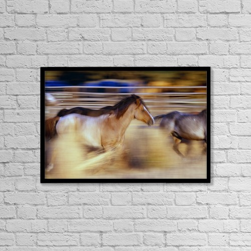 "Printscapes Wall Art: 18"" x 12"" Canvas Print With Black Frame - Animals by Natural Selection Craig Tuttle"