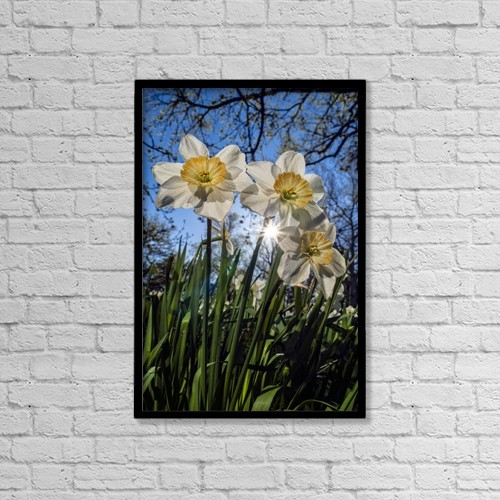 "Printscapes Wall Art: 12"" x 18"" Canvas Print With Black Frame - Flowers by F. M. Kearney"