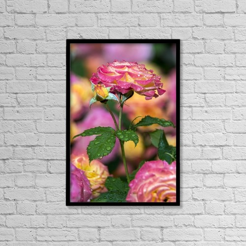 """Printscapes Wall Art: 12"""" x 18"""" Canvas Print With Black Frame - Flowers by F. M. Kearney"""