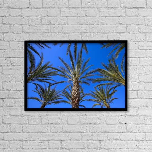 """Printscapes Wall Art: 18"""" x 12"""" Canvas Print With Black Frame - Palm Trees by Don Hammond"""