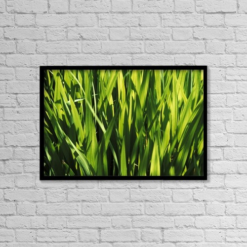 "Printscapes Wall Art: 18"" x 12"" Canvas Print With Black Frame - Mass Of Plant Leaves by Sean White"