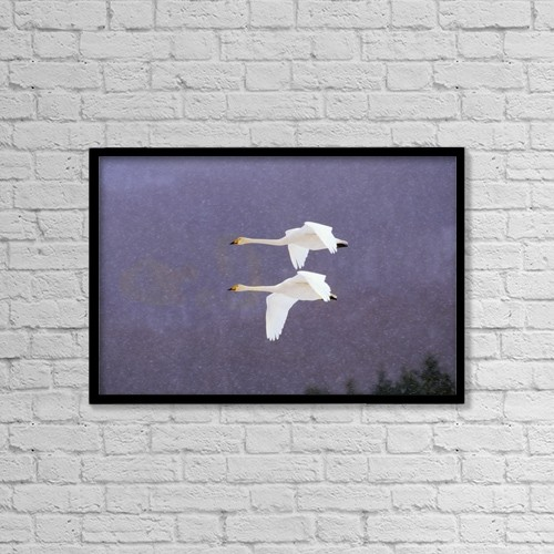 "Printscapes Wall Art: 18"" x 12"" Canvas Print With Black Frame - Animals by Natural Selection Anita Weiner"