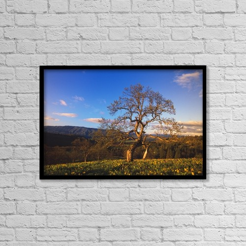 """Printscapes Wall Art: 18"""" x 12"""" Canvas Print With Black Frame - Scenic by Natural Selection Craig Tuttle"""
