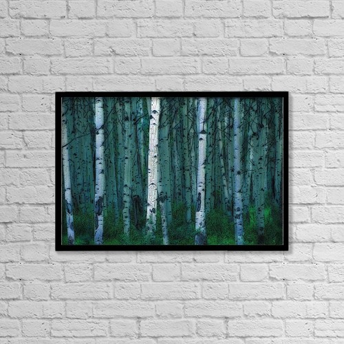 """Printscapes Wall Art: 18"""" x 12"""" Canvas Print With Black Frame - Forest Of Poplar Tree Trunks by Corey Hochachka"""