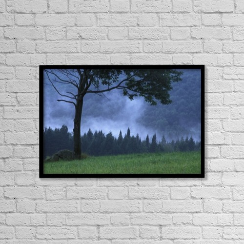 """Printscapes Wall Art: 18"""" x 12"""" Canvas Print With Black Frame - Coniferous Trees Early In The Morning by David Chapman"""