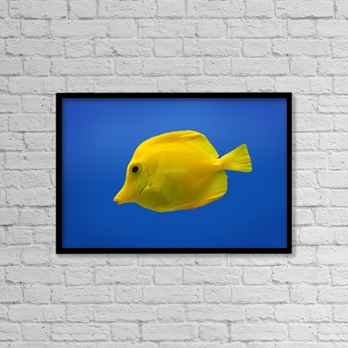 "Printscapes Wall Art: 18"" x 12"" Canvas Print With Black Frame - Yellow Fish by Don Hammond"