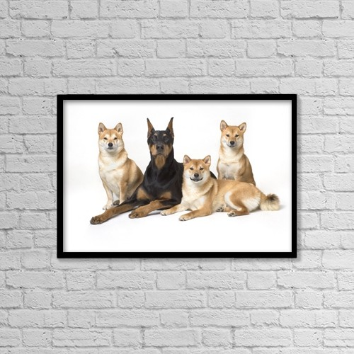 "Printscapes Wall Art: 18"" x 12"" Canvas Print With Black Frame - Doberman Pinscher And Friends by Corey Hochachka"