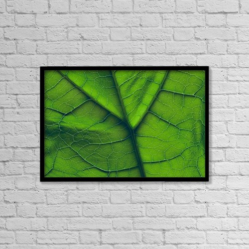 """Printscapes Wall Art: 18"""" x 12"""" Canvas Print With Black Frame - Close-Up Of A Leaf by Don Hammond"""