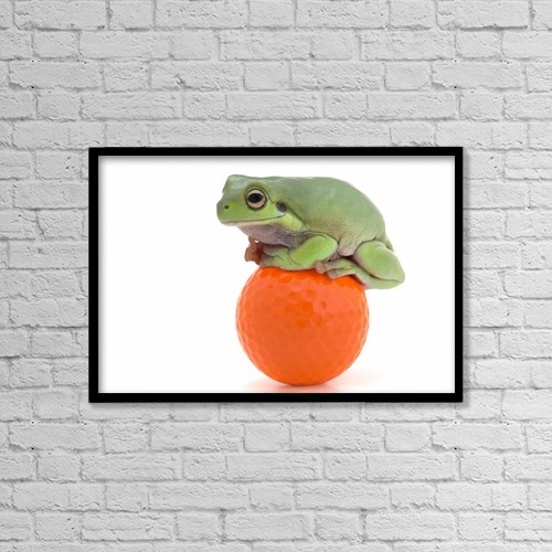 "Printscapes Wall Art: 18"" x 12"" Canvas Print With Black Frame - Frog Sitting On A Golf Ball by Corey Hochachka"