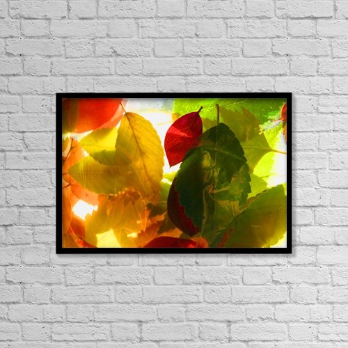 "Printscapes Wall Art: 18"" x 12"" Canvas Print With Black Frame - A Collage Of Leaves by Con Tanasiuk"