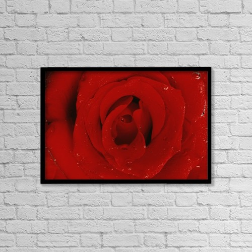 """Printscapes Wall Art: 18"""" x 12"""" Canvas Print With Black Frame - Red Rose by Don Hammond"""