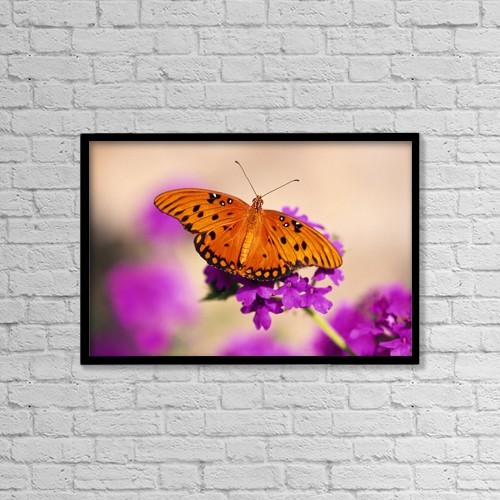 """Printscapes Wall Art: 18"""" x 12"""" Canvas Print With Black Frame - Orange Butterfly by Natural Selection Craig Tuttle"""