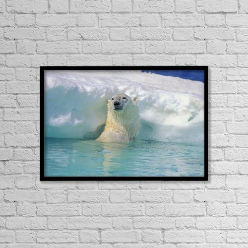 "Printscapes Wall Art: 18"" x 12"" Canvas Print With Black Frame - Polar Bear In Water by John Pitcher"