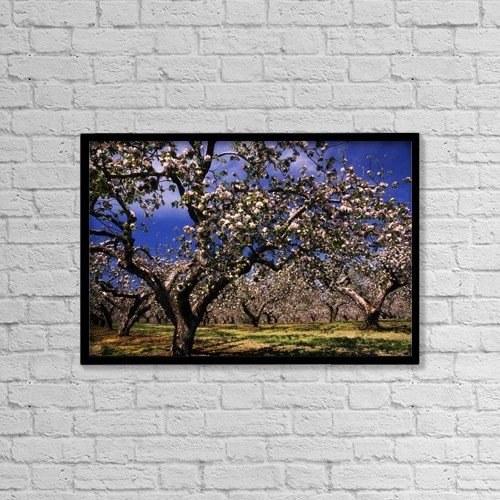 "Printscapes Wall Art: 18"" x 12"" Canvas Print With Black Frame - Agriculture by The Irish Image Collection"