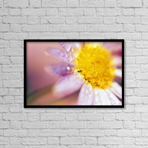 "Printscapes Wall Art: 18"" x 12"" Canvas Print With Black Frame - Flowers by Natural Selection Craig Tuttle"