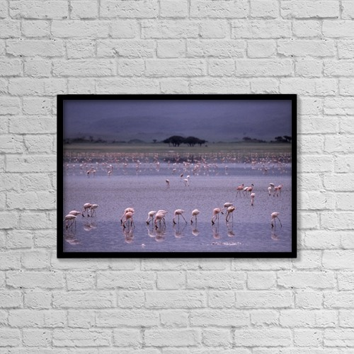 """Printscapes Wall Art: 18"""" x 12"""" Canvas Print With Black Frame - Animals by Natural Selection Chris Pinchbeck"""