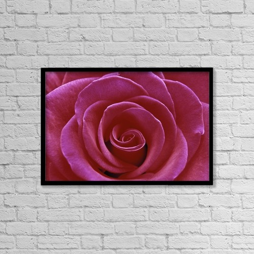 """Printscapes Wall Art: 18"""" x 12"""" Canvas Print With Black Frame - Rose Blossom by Natural Selection Chris Pinchbeck"""