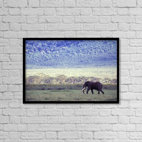 "Printscapes Wall Art: 18"" x 12"" Canvas Print With Black Frame - Elephant In The Wild by Natural Selection Chris Pinchbeck"