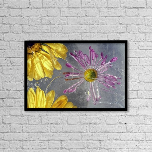 "Printscapes Wall Art: 18"" x 12"" Canvas Print With Black Frame - Flower Blossoms Under Ice by Natural Selection Craig Tuttle"