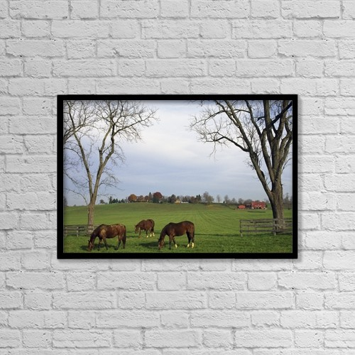 "Printscapes Wall Art: 18"" x 12"" Canvas Print With Black Frame - Horses Grazing by Natural Selection Tony Sweet"