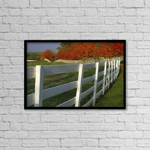 """Printscapes Wall Art: 18"""" x 12"""" Canvas Print With Black Frame - Fenceline by Natural Selection Tony Sweet"""