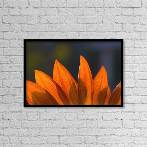 "Printscapes Wall Art: 18"" x 12"" Canvas Print With Black Frame - Sunflower Close-Up by Carson Ganci"