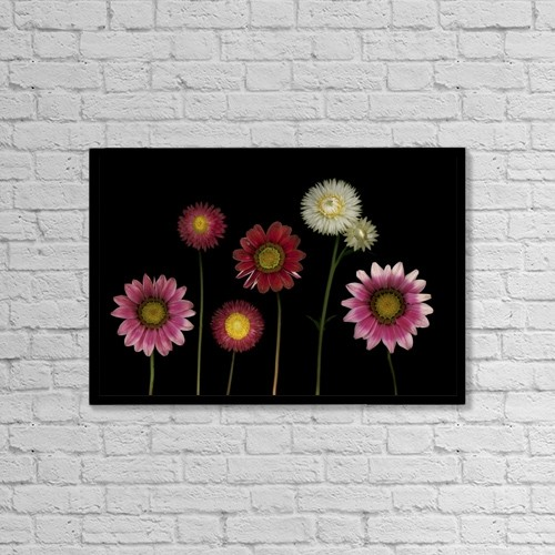 "Printscapes Wall Art: 18"" x 12"" Canvas Print With Black Frame - Flowers by Deddeda"