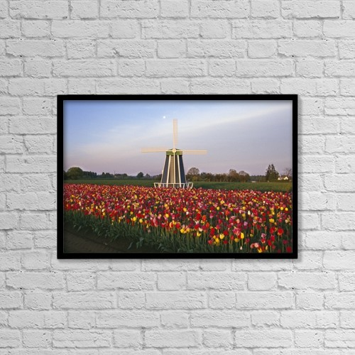"""Printscapes Wall Art: 18"""" x 12"""" Canvas Print With Black Frame - Tulip Field And Windmill by Natural Selection Craig Tuttle"""