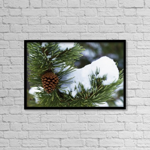 "Printscapes Wall Art: 18"" x 12"" Canvas Print With Black Frame - Snow On A Tree by Natural Selection Craig Tuttle"