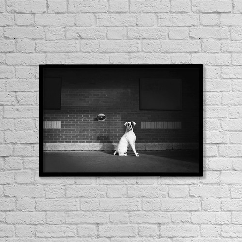 "Printscapes Wall Art: 18"" x 12"" Canvas Print With Black Frame - Alert Dog by Richard Wear"