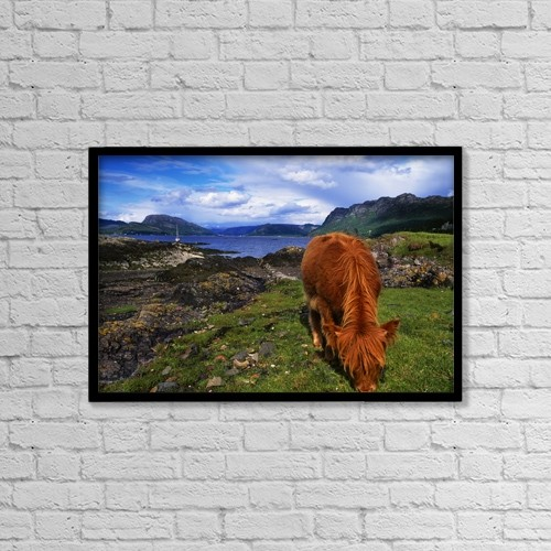 "Printscapes Wall Art: 18"" x 12"" Canvas Print With Black Frame - Highland Cattle, Scotland by The Irish Image Collection"