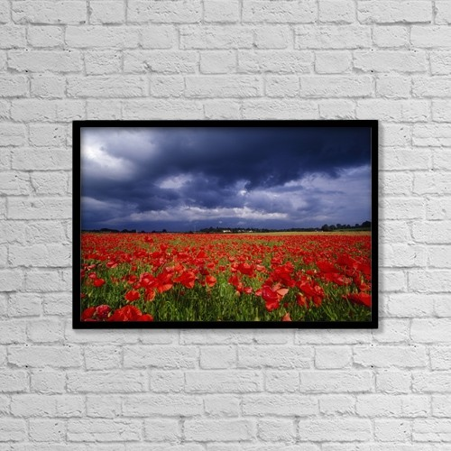 "Printscapes Wall Art: 18"" x 12"" Canvas Print With Black Frame - County Kildare, Ireland; Poppy Field by Richard Cummins"