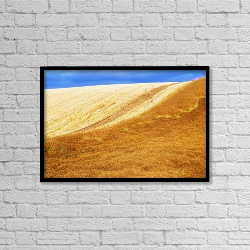 "Printscapes Wall Art: 18"" x 12"" Canvas Print With Black Frame - Crops, Oil Seed Rape by The Irish Image Collection"
