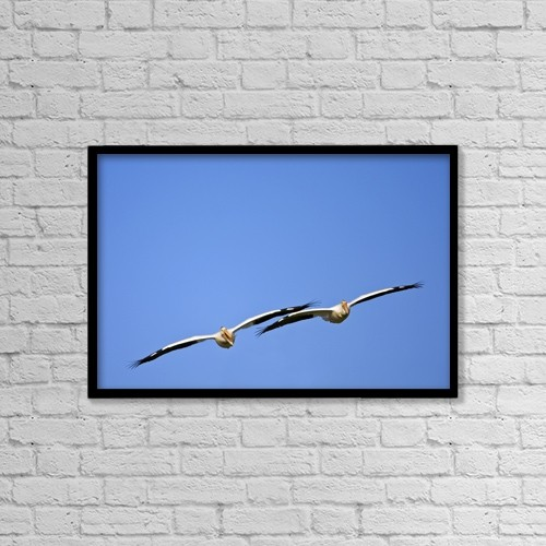 "Printscapes Wall Art: 18"" x 12"" Canvas Print With Black Frame - Two Pelicans In Flight by Richard Wear"