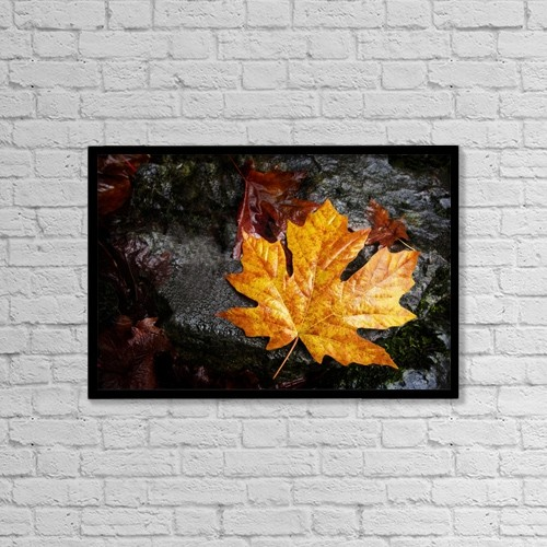 "Printscapes Wall Art: 18"" x 12"" Canvas Print With Black Frame - Maple Leaf by Richard Wear"