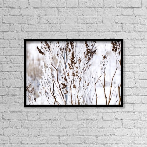 """Printscapes Wall Art: 18"""" x 12"""" Canvas Print With Black Frame - Plants In Winter by David Chapman"""