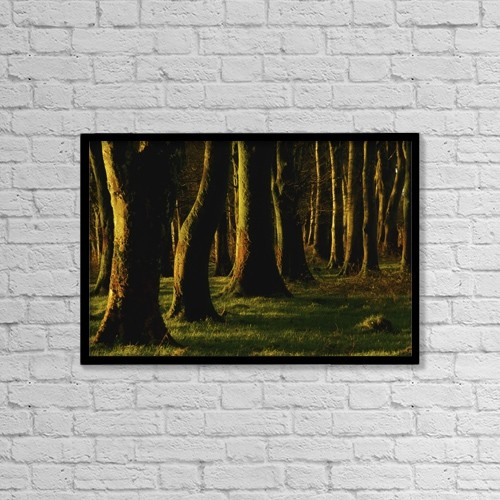 """Printscapes Wall Art: 18"""" x 12"""" Canvas Print With Black Frame - Glenville Woods, County Cork, Ireland by Richard Cummins"""
