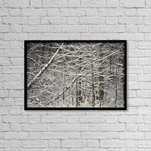 """Printscapes Wall Art: 18"""" x 12"""" Canvas Print With Black Frame - Snow Covered Branches by Carson Ganci"""
