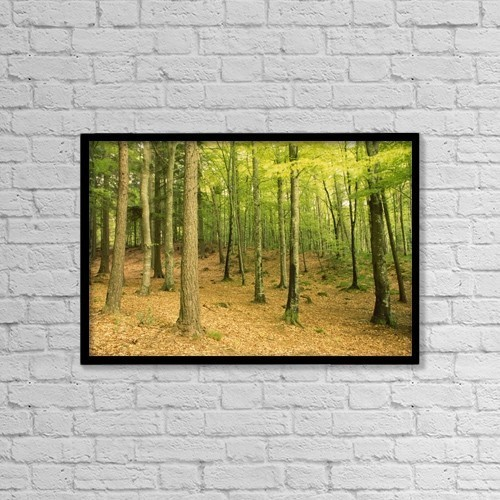 "Printscapes Wall Art: 18"" x 12"" Canvas Print With Black Frame - Scenic by Richard Cummins"