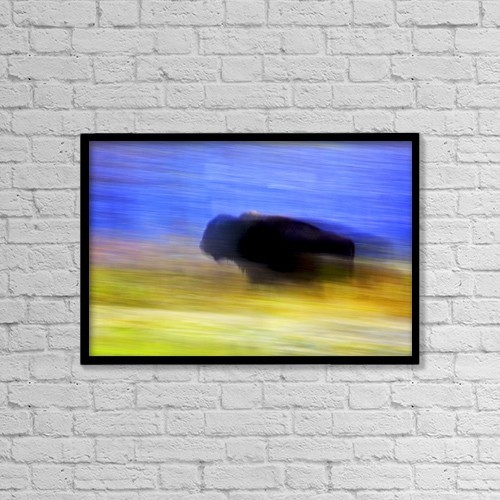"Printscapes Wall Art: 18"" x 12"" Canvas Print With Black Frame - Buffalo In Motion by Richard Wear"