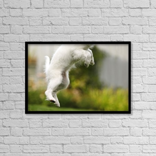 """Printscapes Wall Art: 18"""" x 12"""" Canvas Print With Black Frame - Dog Jumps by Richard Wear"""