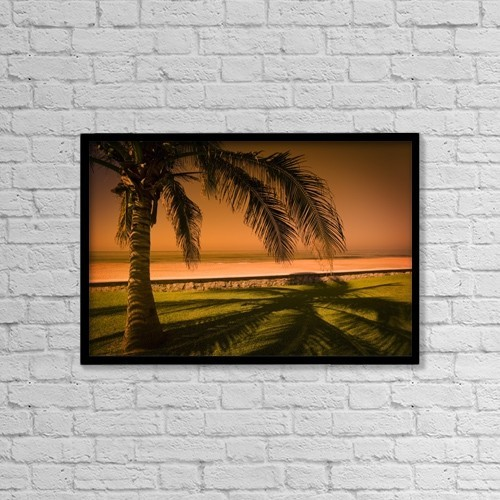"""Printscapes Wall Art: 18"""" x 12"""" Canvas Print With Black Frame - Palm Tree In Mazatlan, Mexico by Darren Greenwood"""