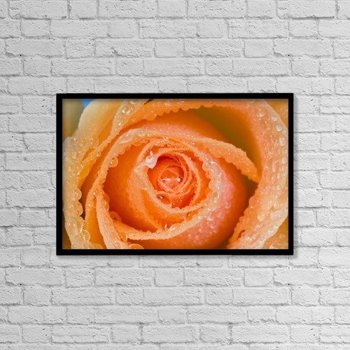 "Printscapes Wall Art: 18"" x 12"" Canvas Print With Black Frame - Orange Rose With Dew by Craig Tuttle"